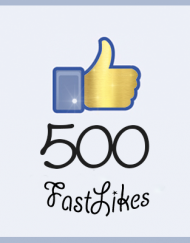 500website
