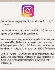 autofollowers_instagram_1