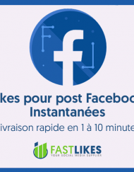 likes_facebook_rapide
